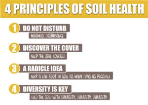 4 Principles of Soil Health