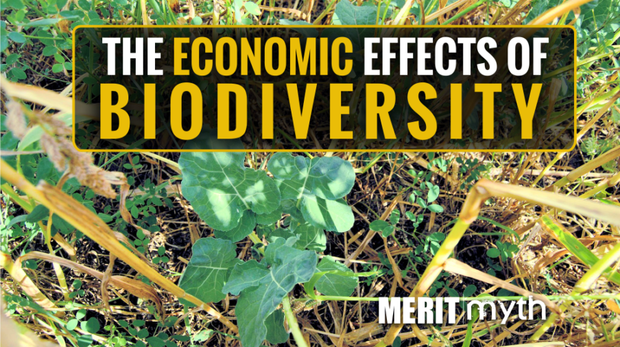 Economic Effects Biodiversity