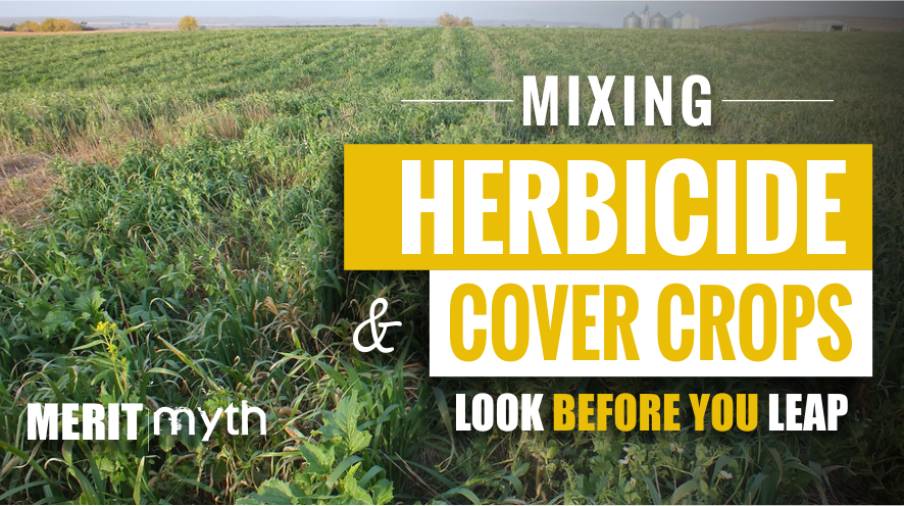 herbicide, cover crop